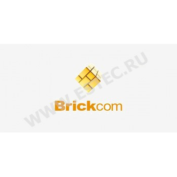 ПО ip видеокамер Brickom (протокол ONVIF) - Brickom USB ключ TRASSIR