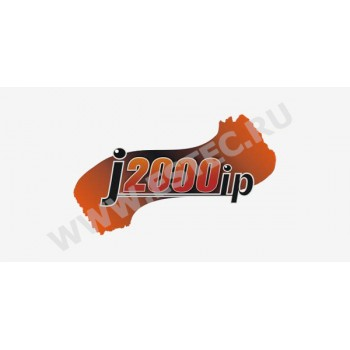 ПО для ip видеокамер J2000IP (протокол ONVIF) — J2000IP USB ключ TRASSIR
